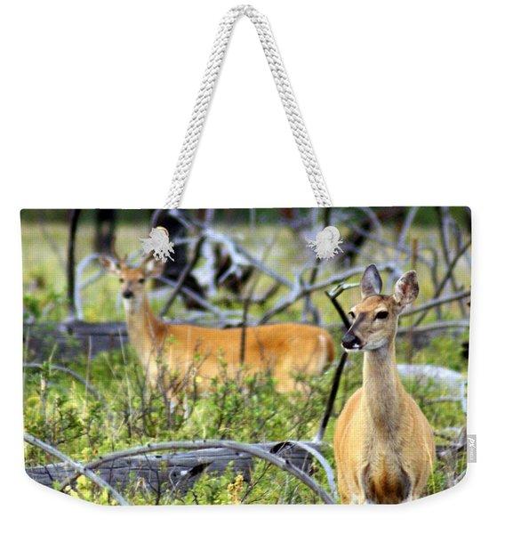 Whitetails Weekender Tote Bag