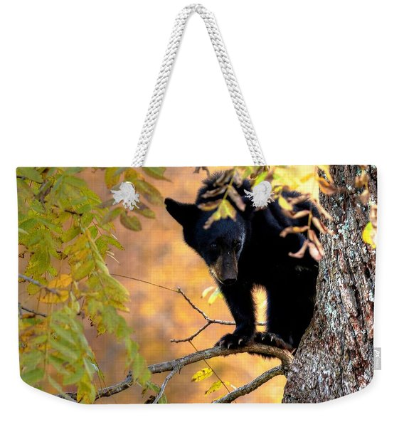 Who Are You Looking At Weekender Tote Bag