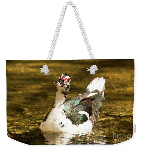 Who Me Wildlife Art By Kaylyn Franks Weekender Tote Bag