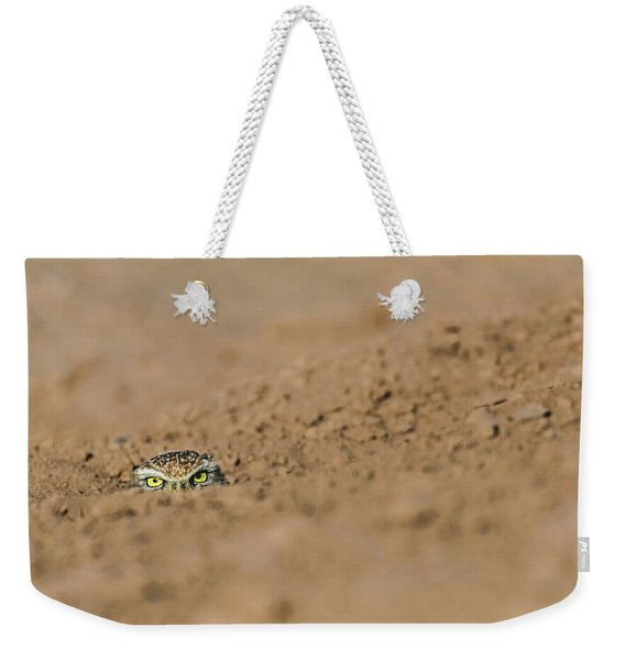 Weekender Tote Bag featuring the photograph Whozat by Laura Roberts