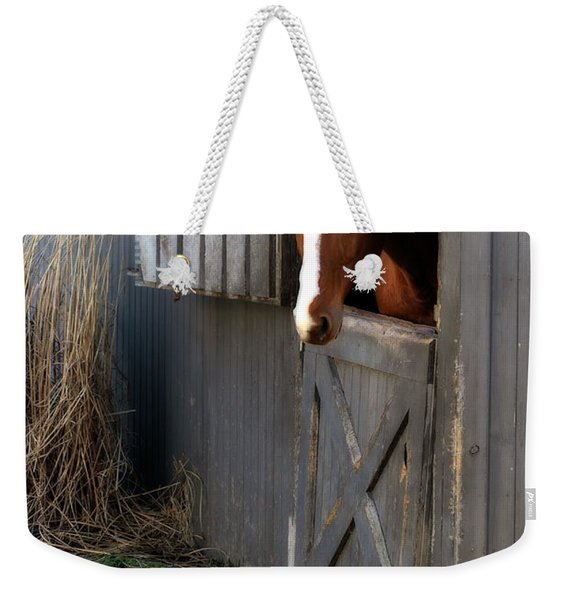 Why Did The Guinea Hen Cross The Road Weekender Tote Bag