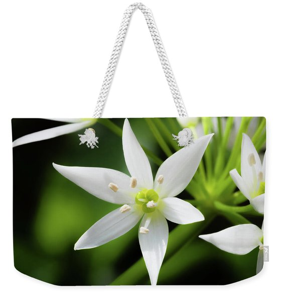 Weekender Tote Bag featuring the photograph Wild Garlic Flower by Nick Bywater
