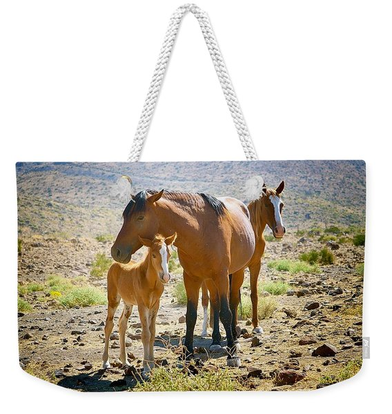 Wild Horse Family Weekender Tote Bag