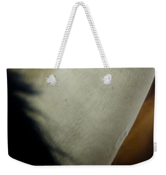 Weekender Tote Bag featuring the photograph Wild Horses Of Nevada 1 by Catherine Sobredo