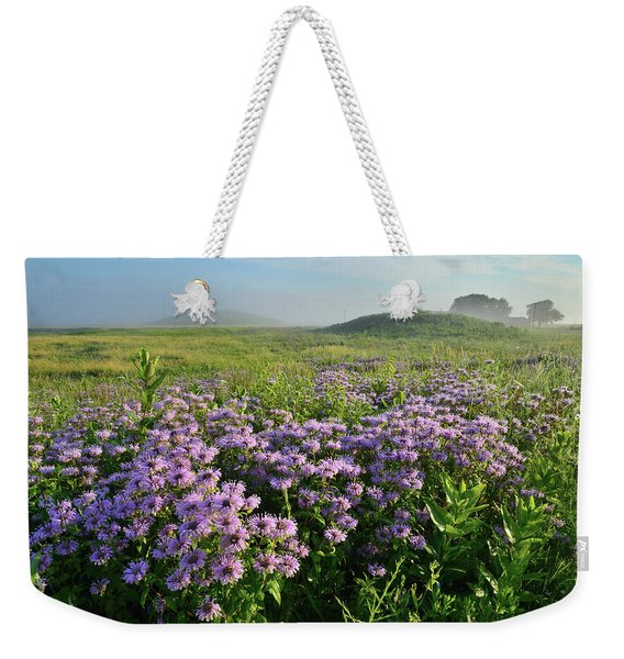 Wild Mints Galore In Glacial Park Weekender Tote Bag