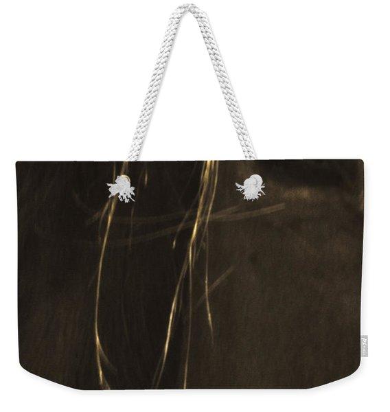 Wild Mustangs Of New Mexico 43 Weekender Tote Bag