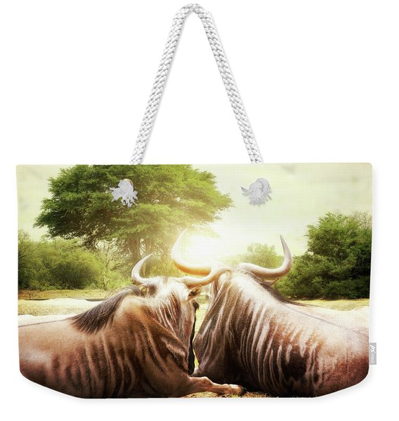 Wildebeest Looking Out Over African Sunset Weekender Tote Bag