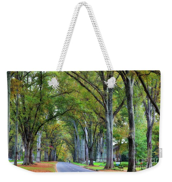 Willow Oak Trees Weekender Tote Bag
