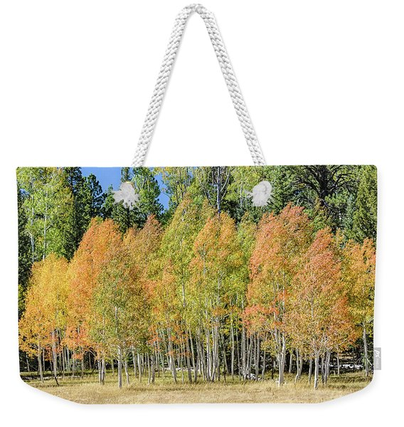 Windblown Aspen Weekender Tote Bag