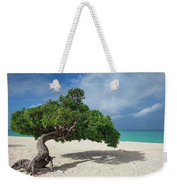 Windswept Divi Divi Tree On The Island Of Aruba Weekender Tote Bag