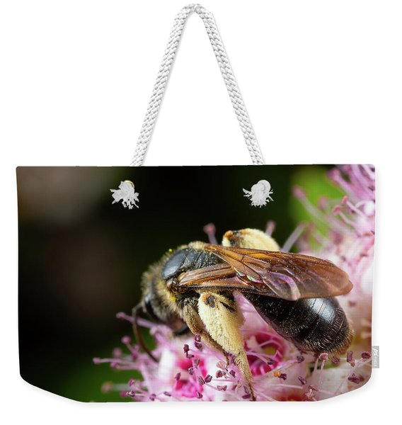 Weekender Tote Bag featuring the photograph Wings N Thighs by Brian Hale