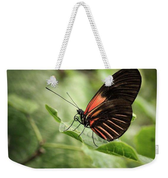 Wings Of The Tropics Butterfly Weekender Tote Bag
