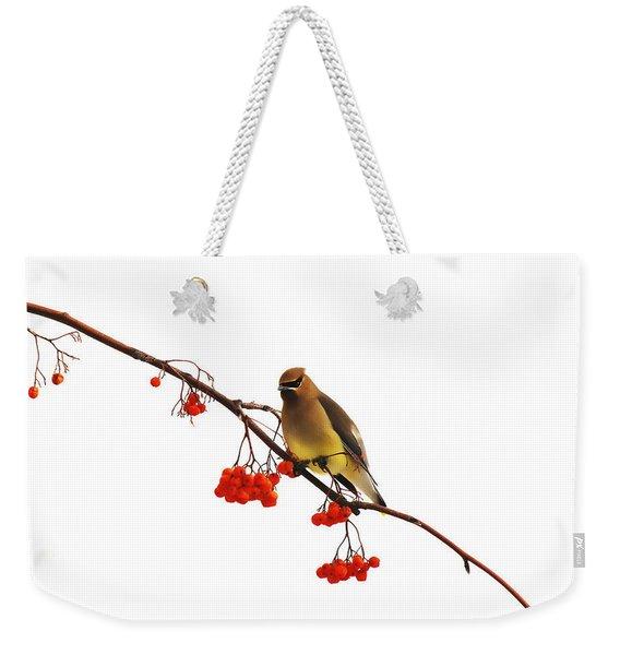Winter Birds - Waxwing  Weekender Tote Bag