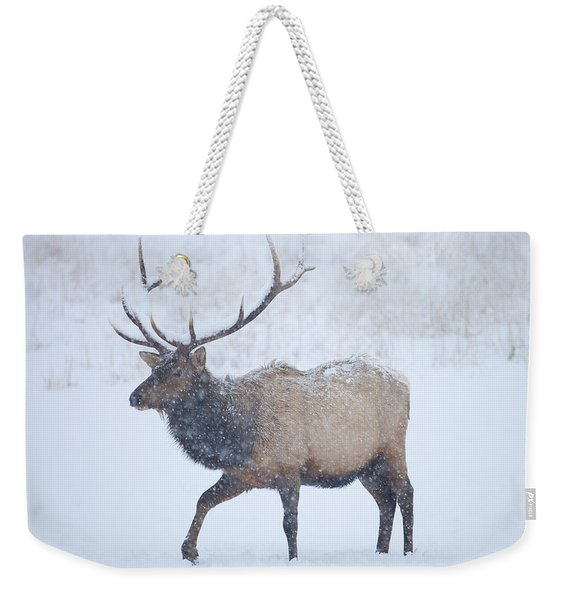 Winter Bull Weekender Tote Bag