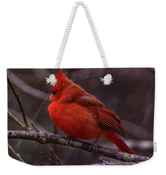 Winter Crimson  Weekender Tote Bag