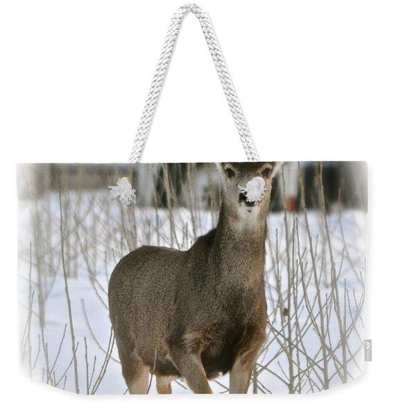 Winter Deer On The Tree Farm Weekender Tote Bag