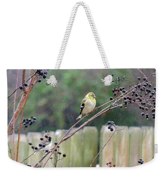 Winter Goldfinch In The Rain Weekender Tote Bag