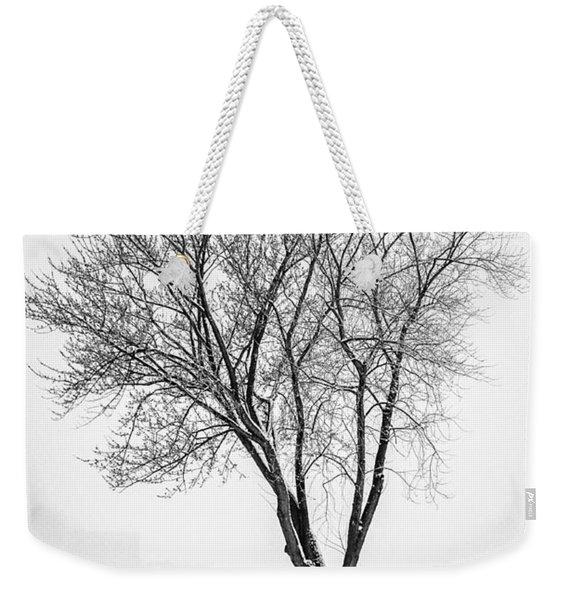 Winter Solitude Weekender Tote Bag