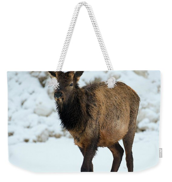 Winter Spike Weekender Tote Bag