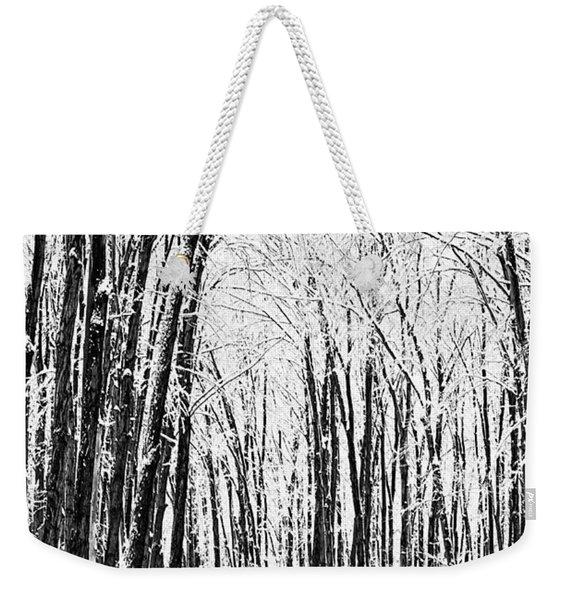 Winter Startk Weekender Tote Bag