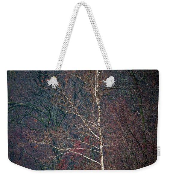 Winter Sycamore Weekender Tote Bag
