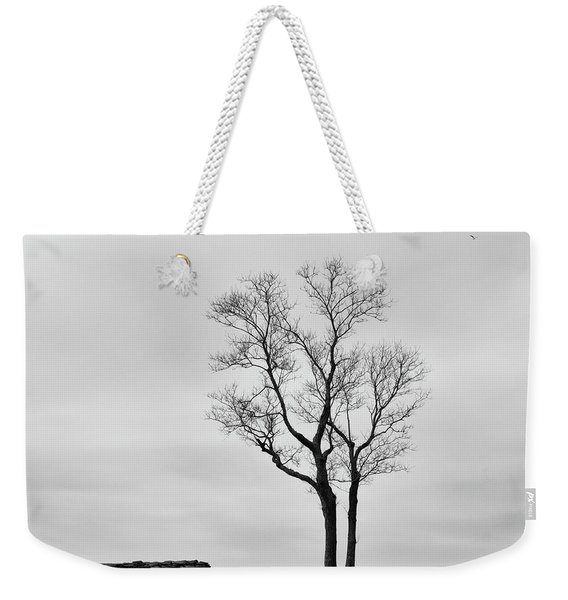 Weekender Tote Bag featuring the photograph Winter Trees And Fences by Nancy De Flon