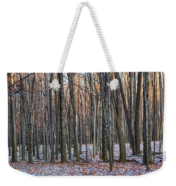 Winter - Uw Arboretum Madison Wisconsin Weekender Tote Bag