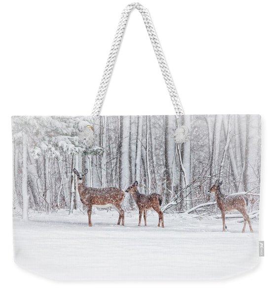 Winter Visits Weekender Tote Bag