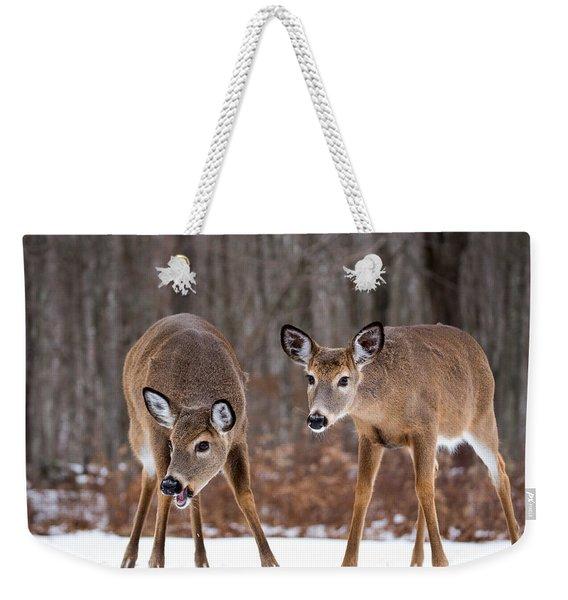 Winter White Tail Deer Weekender Tote Bag