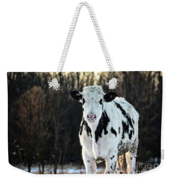 Wisconsin Dairy Cow Weekender Tote Bag