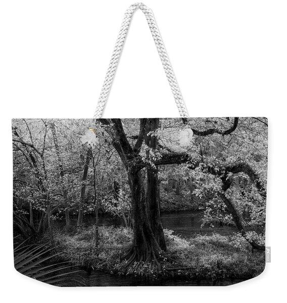 Wisdom Of A Tree Weekender Tote Bag