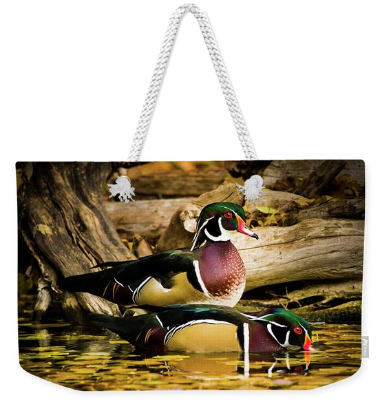 Wood Ducks In Autumn Waters Weekender Tote Bag