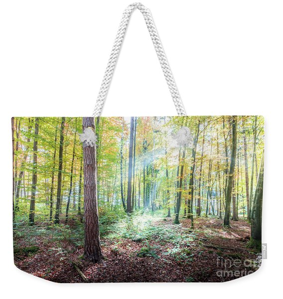 Woodland In Fall Weekender Tote Bag