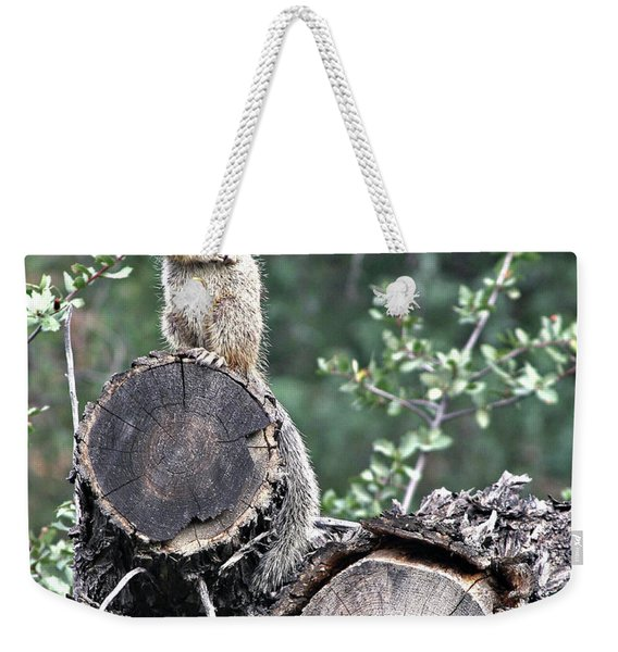 Woodpile Squirrel Weekender Tote Bag