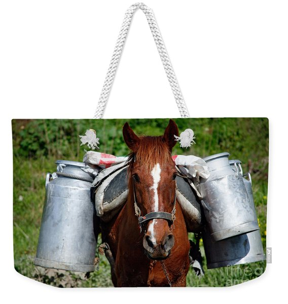 Work Horse At The Azores Weekender Tote Bag