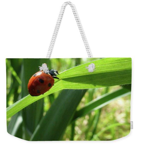 World Of Ladybug 2 Weekender Tote Bag