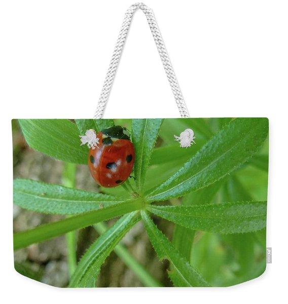 World Of Ladybug 3 Weekender Tote Bag