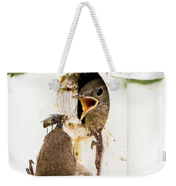 Wren Breakfast Weekender Tote Bag