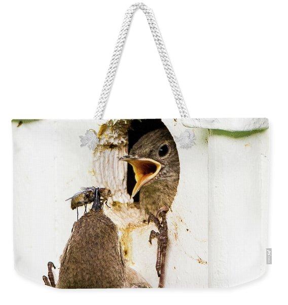 Wren Breakfast Weekender Tote Bag