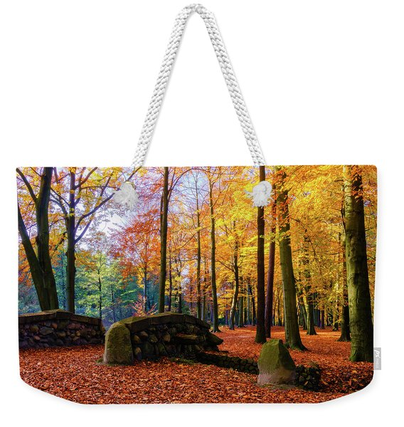 Weekender Tote Bag featuring the photograph Yellow And Stones by Dmytro Korol