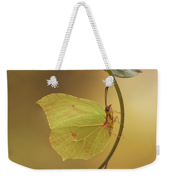Yellow Butterfly On Blue Forget-me-not Flowers Weekender Tote Bag