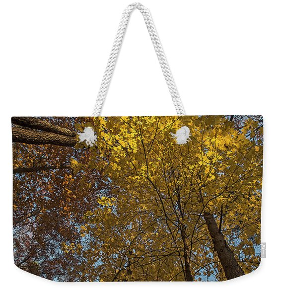 Yellow-leaves-maple-forest Weekender Tote Bag