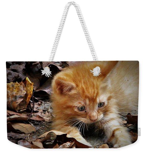 Yellow Tabby Kitten Weekender Tote Bag