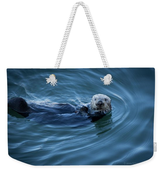 You Otter Take My Picture, Lady Weekender Tote Bag