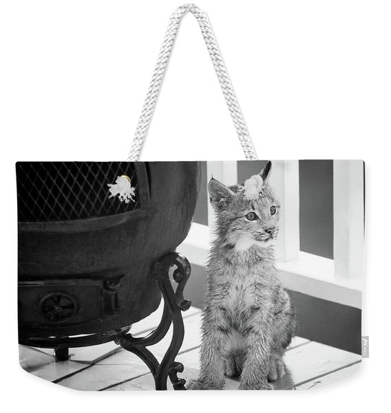 Weekender Tote Bag featuring the photograph You Say Somethin by Tim Newton