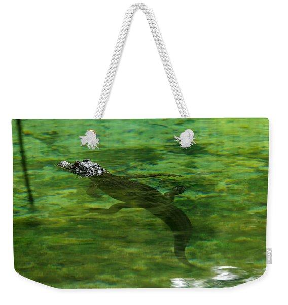 Young Alligator Weekender Tote Bag