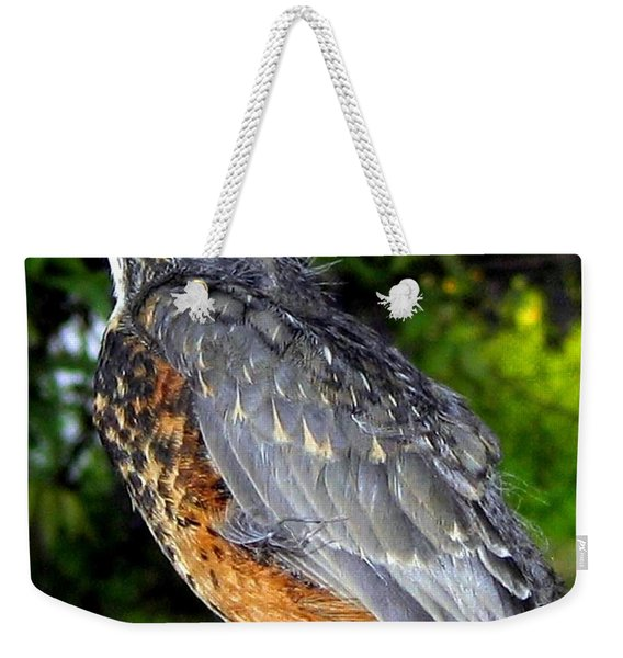 Young American Robin Weekender Tote Bag