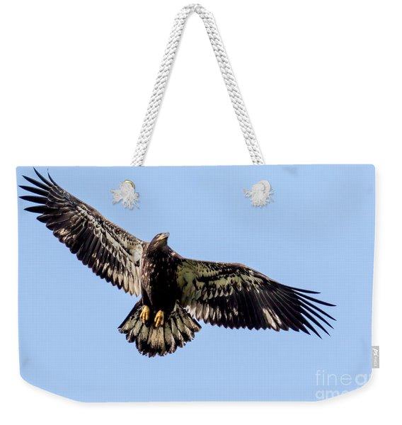 Young Bald Eagle Flight Weekender Tote Bag