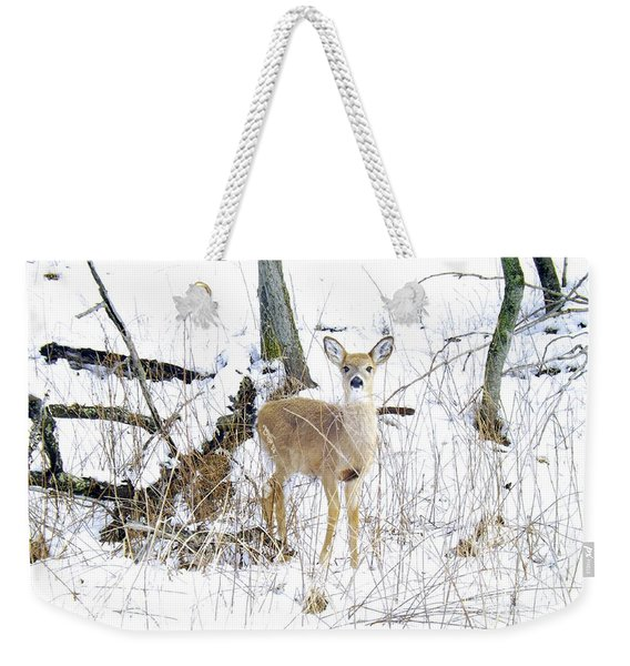 Young Doe And Spring Snow Weekender Tote Bag