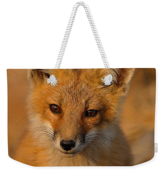 Young Fox Weekender Tote Bag